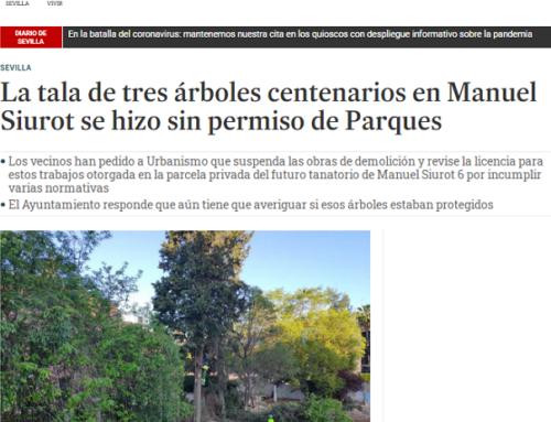 Tala de árboles centenarios